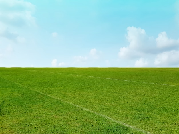 Hintergrund des grünen grasfeldes und des horizonts gegen blauen bewölkten himmel