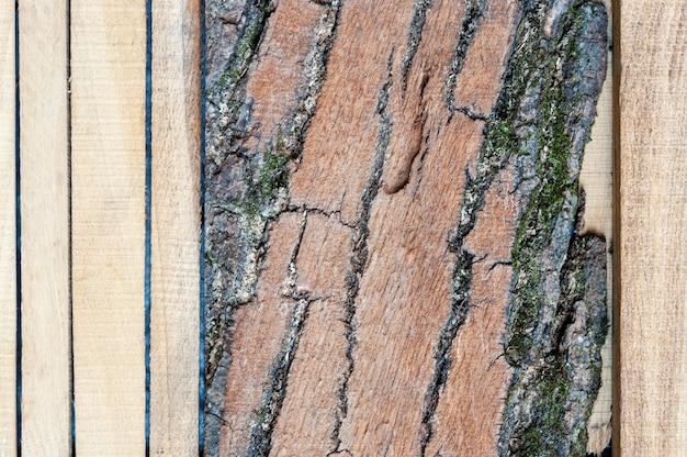 Hintergrund des natürlichen brettes mit einem schönen muster der baumstrukturknoten. design hintergründe texturen bau.
