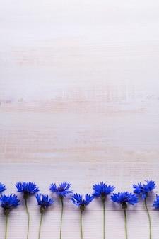 Hintergrund mit frischen kornblumen