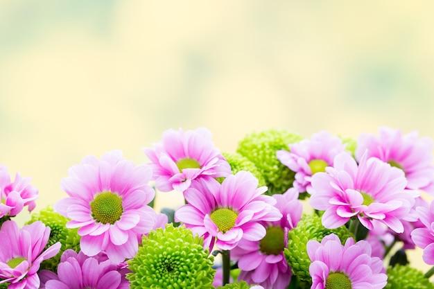 Hintergrund mit frühlingsblumen. abstrakter blumenhintergrund. osterhintergrund.