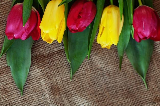 Hintergrund mit gelben und roten tulpen. konzeptionsfeiertag, märz