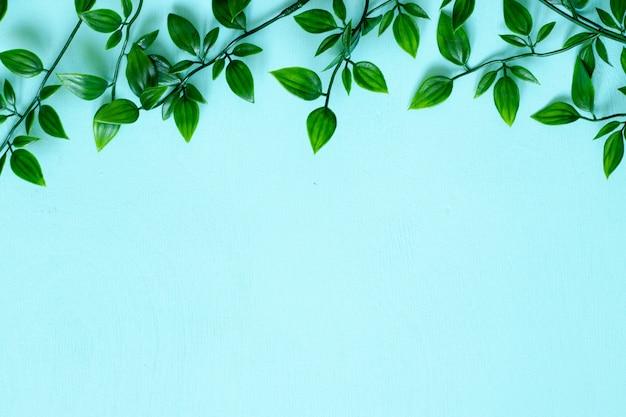 Hintergrund mit grünen blättern und copyspace