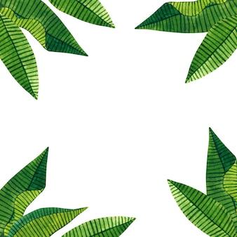 Hintergrund mit grünen tropischen blättern. hand gezeichnete aquarellillustration. isoliert.