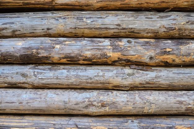 Hintergrund und textur von holzstämmen