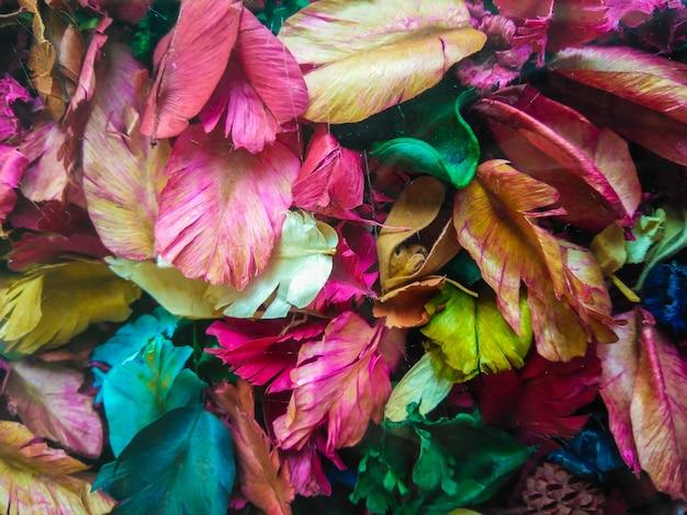 Hintergrund von bunten trockenen blumenblättern