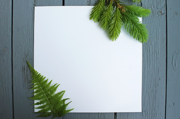 Hintergrundblätter auf weißem papier
