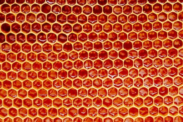 Hintergrundtextur und muster eines abschnitts von wachswaben aus einem bienenstock gefüllt mit gold