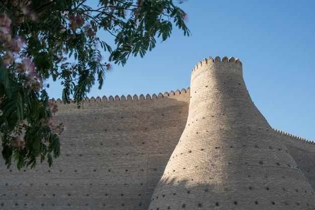 Historische mauern der festung ark in buchara, zentralasien