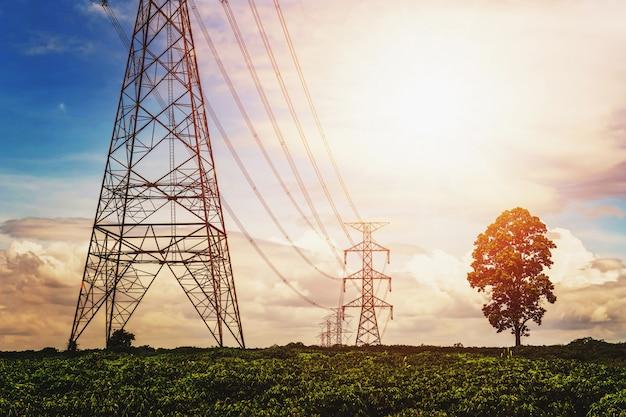 Hochspannungsstromversorgung und stromleitung mit sonnenaufgang und baumhintergrund