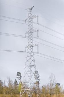 Hochspannungsturm in einer waldzone, vertikales bild