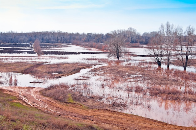 Hochwasser im frühjahr. versunkene felder