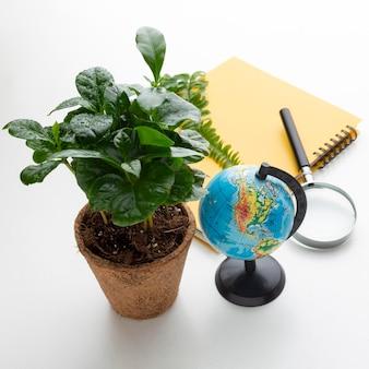 Hochwinkel topfpflanze und studiengegenstände