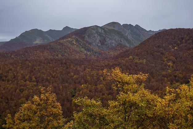 Hochwinkelaufnahme des europa-nationalparks, der im herbst in spanien gefangen genommen wurde