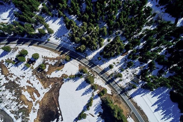 Hochwinkelaufnahme einer autobahn in einem schönen fichtenwald im winter mit schnee, der den boden bedeckt