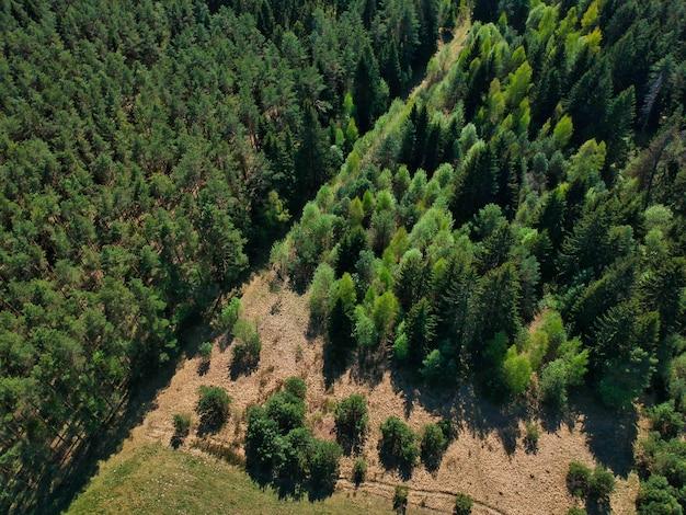 Hochwinkelaufnahme einer schönen grünen landschaft mit bäumen in der region minsk in weißrussland