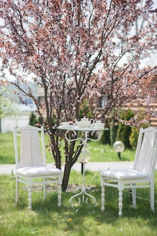 Hochzeitsdeko stühle mit tisch, tassen, teekanne