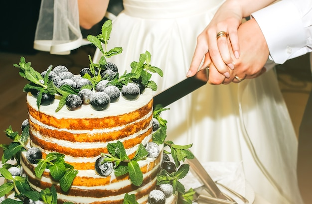 Hochzeitspaar schneidet modernen rustikalen kuchen. offenes biskuit-dessert mit minzblättern und frischen fruchttrauben an der spitze. hochzeitstorte im boho-stil. bräutigam im schwarzen anzug und braut im weißen eleganten kleid.