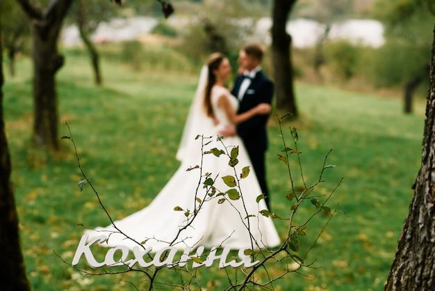 Hochzeitspaare, die im park umarmen und küssen
