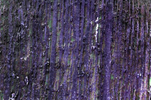 Hölzerne barke des purpurroten felsens für beschaffenheit und hintergrund