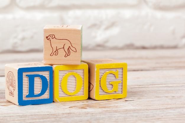 Hölzerne bauklötze mit dem text: hund
