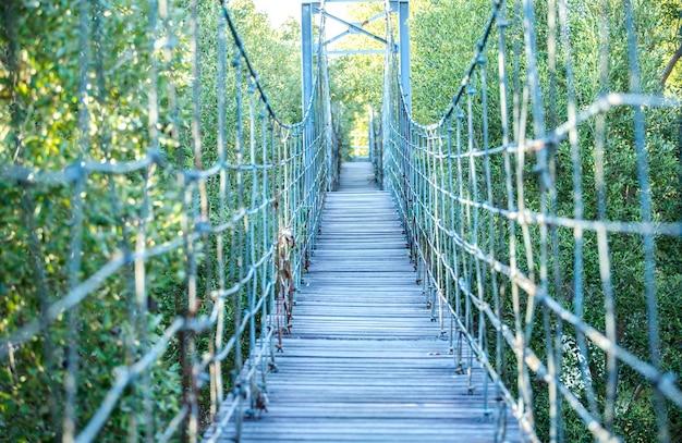 Hölzerne brücke im grünen wald, knall-pu-erholungsstätte, provinz samut prakan, thailand