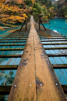 Hölzerne brückenaufhängung über grünem fluss in der natürlichen waldherbstsaison japan