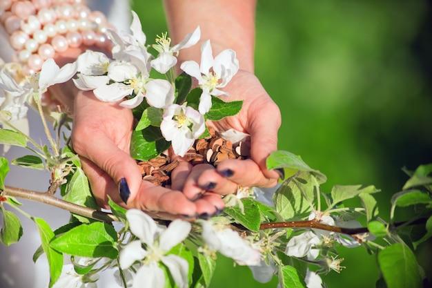 Hölzerne herzen lieben an den frauenhänden hinter dem blütenapfelbaum. friedens- und harmoniekonzept. holding herzform liebessymbol für urlaub valentinstag. romantischer gruß lebensstil und gefühle konzept
