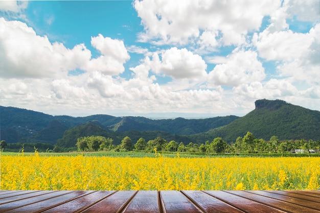 Hölzerne terrasse über schönem gelbem blumenfeld und landschaft des blauen himmels des berges