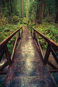 Hölzerne trailbrücke