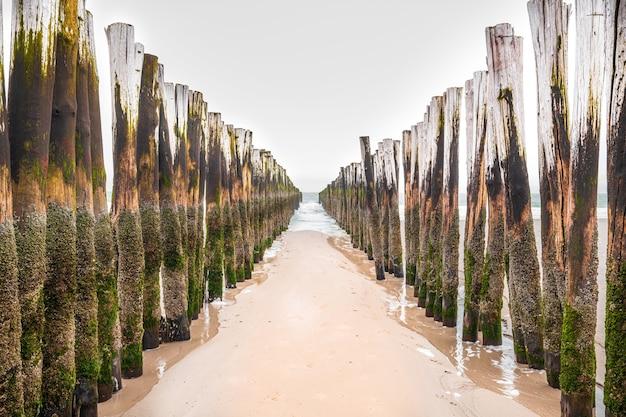 Hölzerne wellenbrecheranlagen in der nordsee, seeland, niederlande