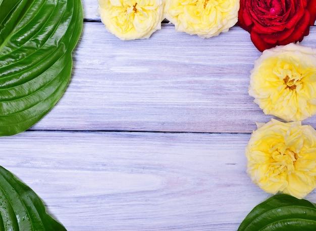 Hölzerner hintergrund mit den knospen von rosen