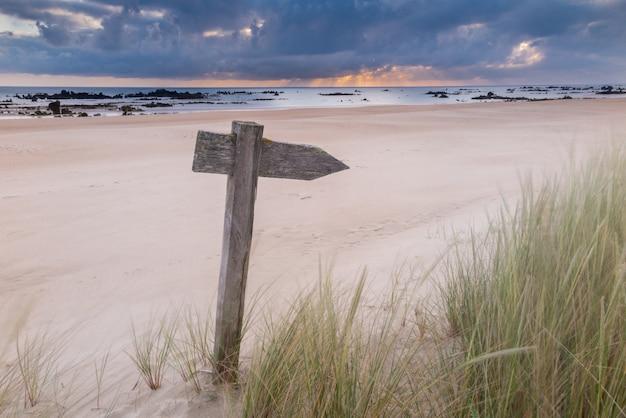 Hölzerner indikatorpfeil in den dünen des strandes