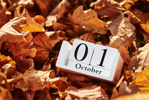 Hölzerner kalenderblock mit datum 1. oktober auf fallendem herbstlaub