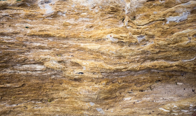 Hölzerner kommender steinbeschaffenheitshintergrund des alten fosil
