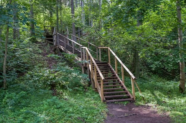 Hölzerner pfad und treppe, die zu staburags-klippe von rauna führen. lettland. baltisch.