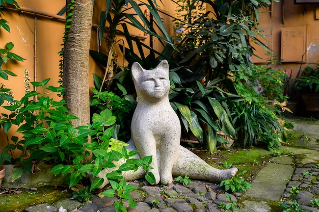 Hof voller pflanzen mit künstlicher katze