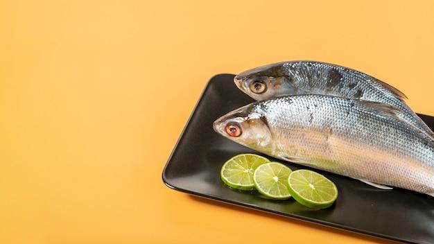 Hohe winkeldekoration mit fischen auf gelbem hintergrund