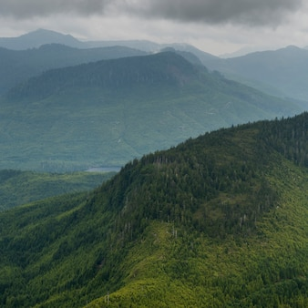 Hohe winkelsicht des tales mit bergen, skeena-königin charlotte regional district, haida gwaii, gra