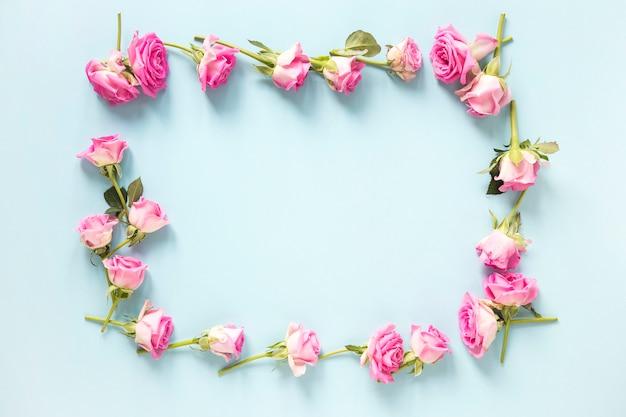 Hohe winkelsicht von den rosa rosen, die rahmen auf blauem hintergrund bilden
