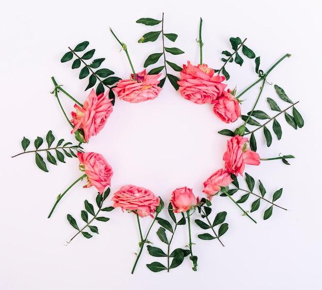 Hohe winkelsicht von rosa rosen vereinbarte in der runden form