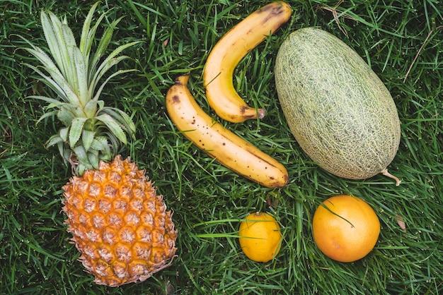 Hohe winkelsicht von verschiedenen frischen früchten auf grünem gras