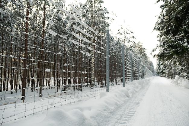 Hoher metallzaun mit kleineren löchern im winterwald. einzäunen eines privaten bereichs vor eindringlingen.