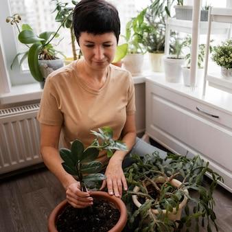 Hoher winkel der frau, die eine zimmerpflanze pflegt