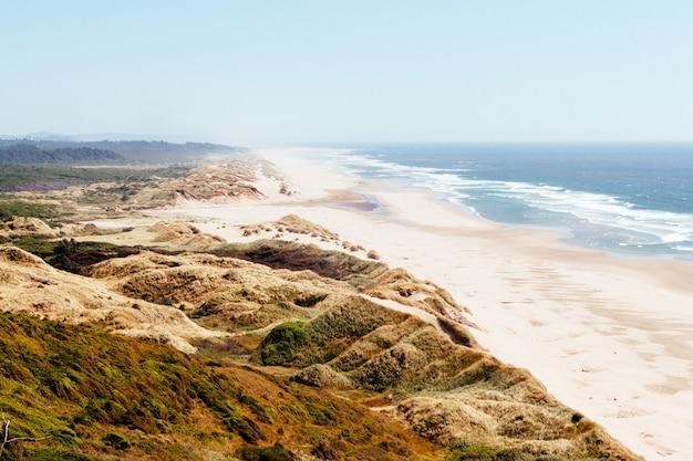 Hoher winkelschuss einer grünen landschaft nahe dem strand mit zusammenstoßenden meereswellen
