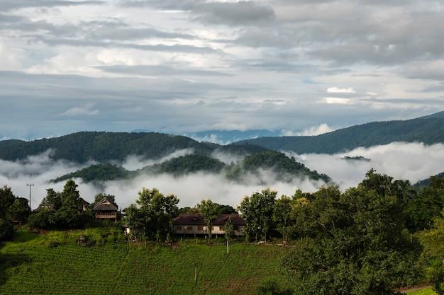 Hoher winkelstandpunkt über regenwaldbergen in thailand