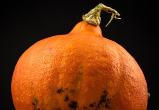 Hokkaido-kürbis oder red kuri auf schwarzem hintergrund. frisches gemüselebensmittelkonzeptfoto des herbstes