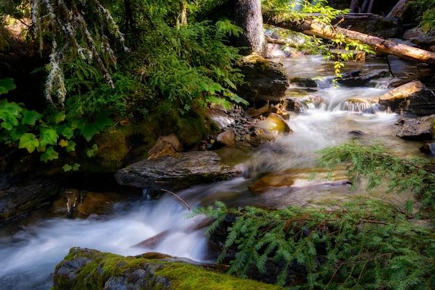 Holland creek an einem sonnigen herbsttag