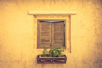 Holz-Fenster mit einem Blumentopf mit Pflanzen
