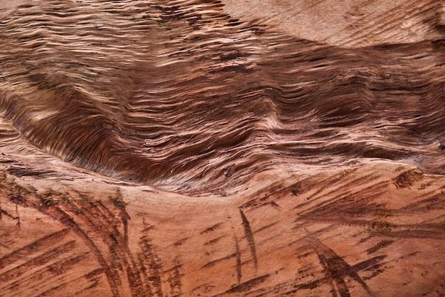 Holz für natürlichen hintergrund. schneiden sie den stamm des teakholzbaums ein. abstraktes bild. platz für text.