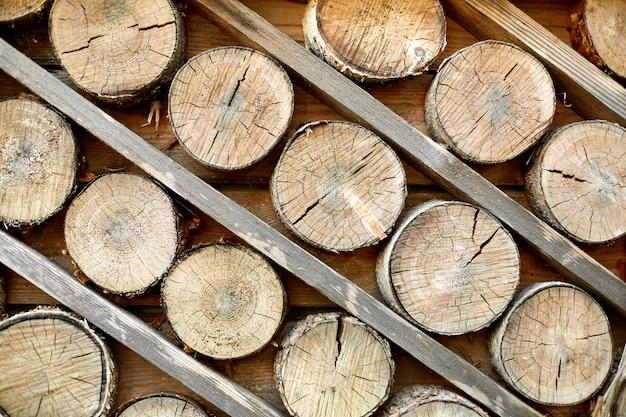 Holz geschnittene protokolle